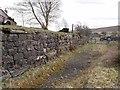 "NY6359 : Loading bay on ""Lord Carlisle's Railway"" by Oliver Dixon"