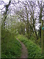 TM3068 : Footpath to Church Farm, Low Street  & New Leas by Adrian Cable