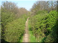 SK5544 : Cycle trail on former railway beside the A611 by JThomas