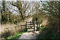 TQ5201 : Kissing gate on the South Downs Way, Litlington by N Chadwick