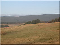 NY5676 : Rough pastures east of Park Head by Mike Quinn
