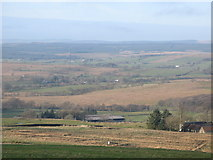 NY5676 : Pastures above Park Head by Mike Quinn