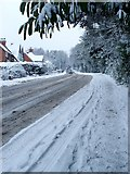 SO9975 : Snowfall on Rose Hill, Lickey by Lorraine Wheale