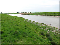 TF5902 : The River Great Ouse between Downham Market and Salters Lode by Evelyn Simak