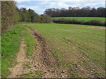 SU8790 : Farmland, Little Marlow by Andrew Smith