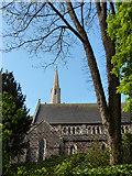 SX9164 : St Mary Magdalene, Upton Church, Torquay by Tom Jolliffe