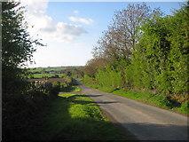 O0863 : Denhamstown, Co. Meath by Kieran Campbell