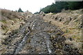 R1377 : Forestry track at Boolinrudda by Graham Horn