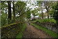 SD8212 : Bridleway approaching Harwood Fields by Bill Boaden