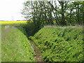 TA1748 : Field drain near Little Arram by JThomas
