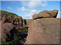 NT6779 : Stacking Up - On the stump at Dunbar's rocky foreshore by Richard West