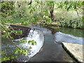 ST7964 : Claverton Minor Weir by chris morton