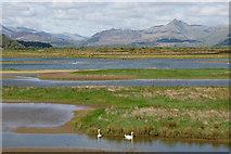 SH5738 : Afon Glaslyn estuary by Mike Pennington
