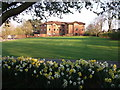 SP2872 : Daffodils and Coniston Grange apartments, Priory Road, Kenilworth by John Brightley