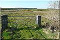 R1373 : Rough grazing at Magherantaska by Graham Horn