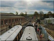 TQ4023 : Trains at Sheffield Park Station by Paul Gillett