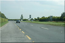 N8216 : The R445 road, County Kildare by Sarah777