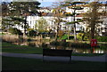 TQ8110 : Wildlife pond, Alexandra Park by N Chadwick