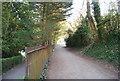 TQ8010 : Path in Alexandra Park by N Chadwick
