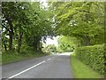 N9353 : Country Road, Co Meath by C O'Flanagan