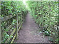SU9589 : Beaconsfield: Footpath to Hedgerley by Nigel Cox