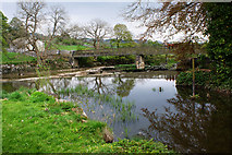 SE0063 : Footbridge over the River Wharfe at Linton Falls by Ian Greig