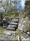NH4891 : Old steps down to the River Carron by sylvia duckworth
