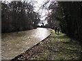 SP6176 : Woods alongside Grand Union Canal  by John Brightley
