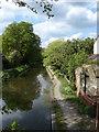 SU9757 : Basingstoke canal by Alan Hunt