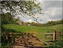 SX8963 : Meadow Cottages, Cockington by Derek Harper