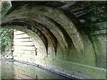 SE2768 : Ribbed Arches under Fountain's Bridge by Matthew Hatton