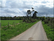 NH5043 : Lane leading to North Lodge by Les Shaw