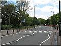 TQ4281 : Zebra crossing on Stansfeld Road by Stephen Craven