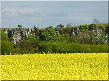 NT5682 : East Lothian Landscape : Balgone Heughs near North Berwick by Richard West