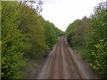 TM3964 : Railway Lines to Saxmundham by Adrian Cable