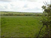 O0558 : Landscape, Co Dublin by C O'Flanagan