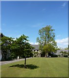 SX7962 : Dartington Hall Courtyard by Tom Jolliffe