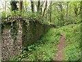 ST2213 : Garden walls, Otterhead by Derek Harper