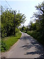 TG1506 : Mill Road, Little Melton by Adrian Cable