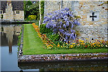 TQ4745 : Borders at Hever Castle, Kent by Peter Trimming