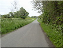 N9246 : Country Road, Co Meath by C O'Flanagan