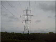 N9648 : Pylon, Co Meath by C O'Flanagan