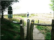 SJ9063 : National Trust entrance sign for The Cloud Summit by Raymond Knapman