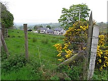 H6059 : Ballymacilroy Townland by Kenneth  Allen