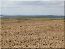 NY5775 : Panorama from the cairn north of Borderrigg (5: WNWb - The Pike) by Mike Quinn