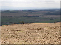 NY5775 : Panorama from the cairn north of Borderrigg (8: SW - Borderrigg) by Mike Quinn