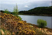 SH7157 : The lower Llynnau Mymbyr by Ian Greig