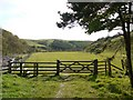 NT9924 : Gate, Happy Valley by Andrew Curtis