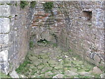 NY5675 : The draw hole in the lime kiln below The Pike by Mike Quinn