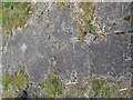NT9508 : Tiled Floor of Biddlestone Hall by Les Hull